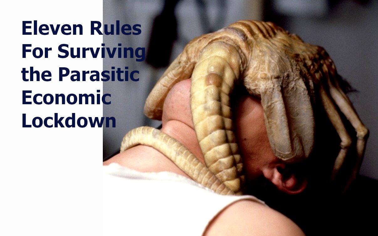 eleven rules for surviving economic lockdown