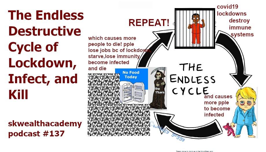 lockdown feedback loop